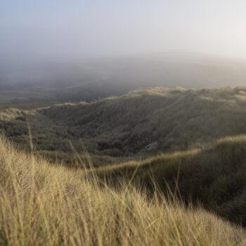 Fog rolling in on grassy hills