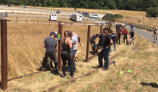 People installing fence posts in a pasture.