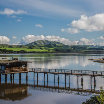 A scenic photo of Tomales Bay with a pier and shipwrecked boat