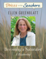 """A photo of Ellen Greenblatt on a title page called """"Becoming a Naturalist"""""""
