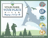 Your Park Your Place graphic with an outline of Point Reyes, trees and a person