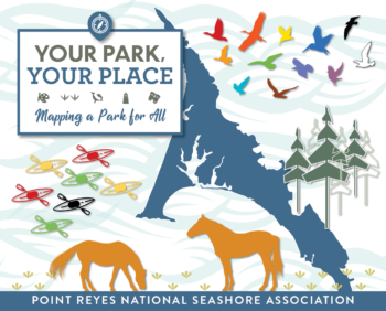 Your Park Your Place graphic with horses and an outline of Point Reyes