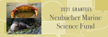 A crab and sea otter on a banner that says Neubacher Marine Science Fund