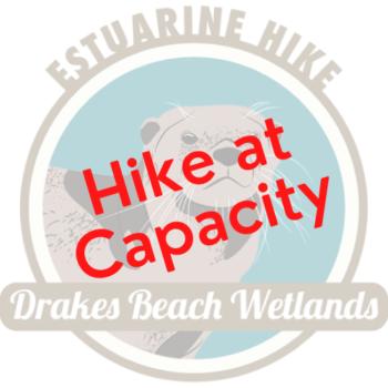 Drakes Beach at Capacity icon