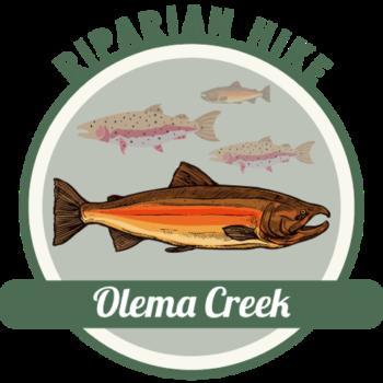 Olema Creek Hike icon